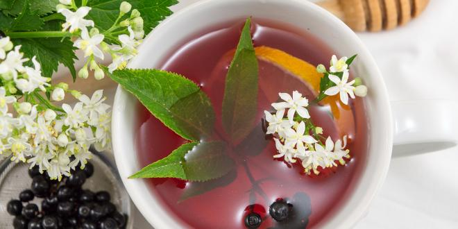 A cup of elderberry tea, with a lemon slice and honey